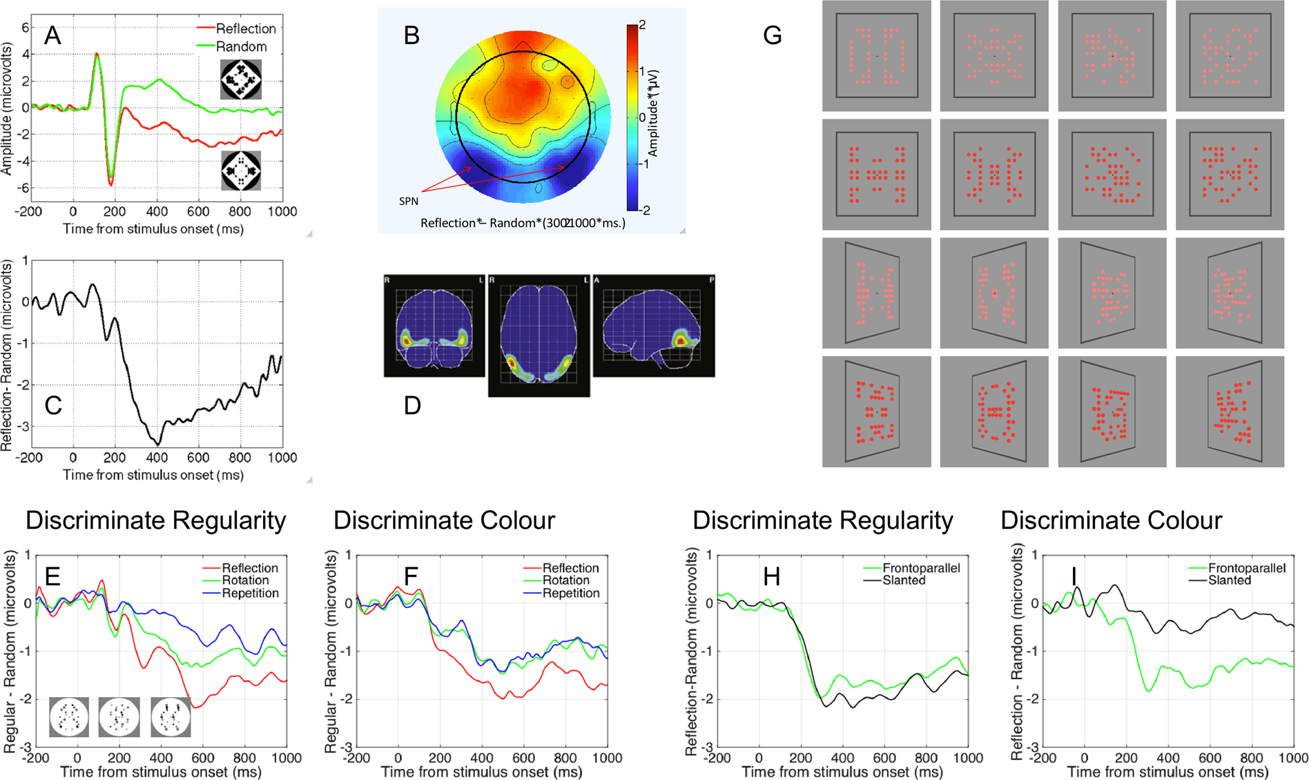 Sustained response to symmetry in extrastriate areas after stimulus