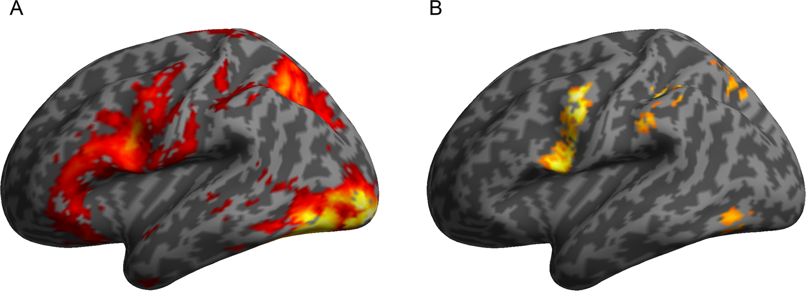 A model-guided dissociation between subcortical and cortical