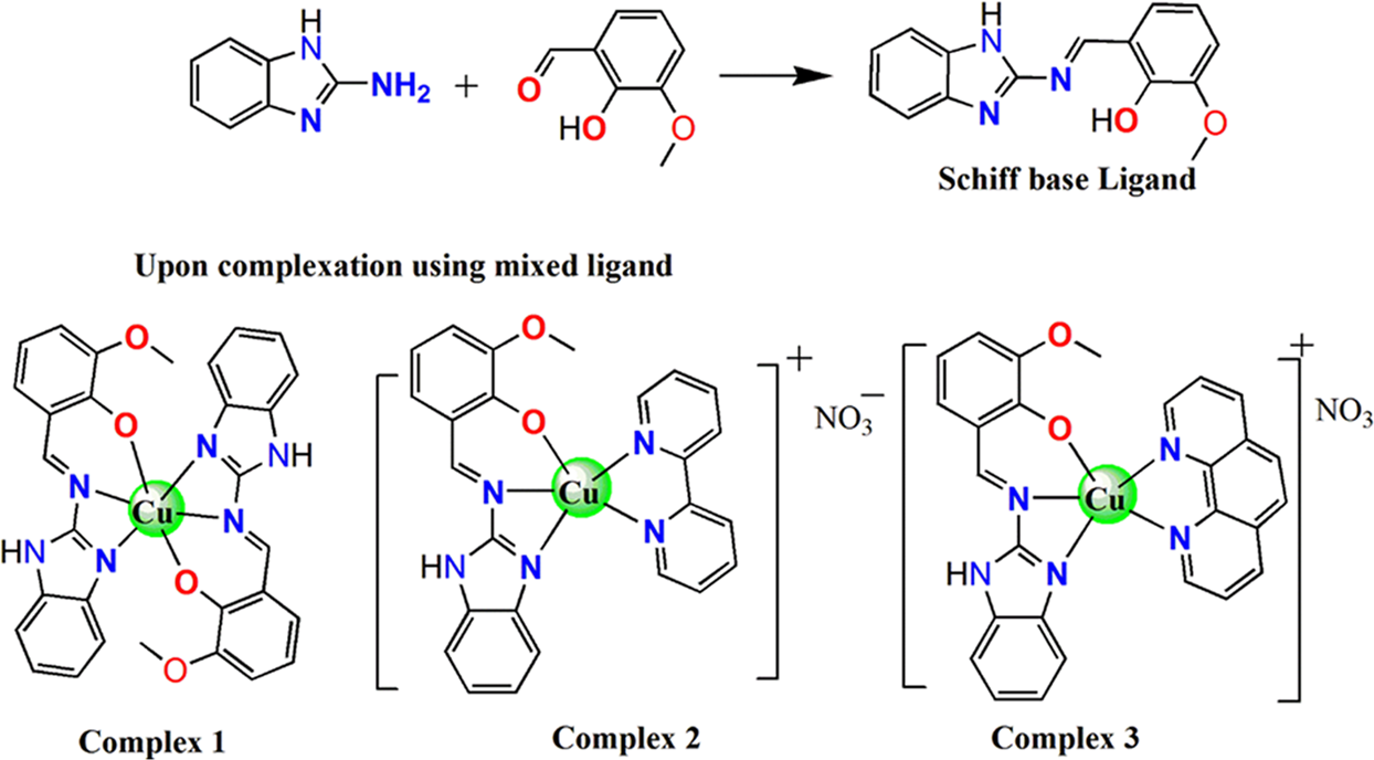 Copper(II) complexes as potential anticancer and