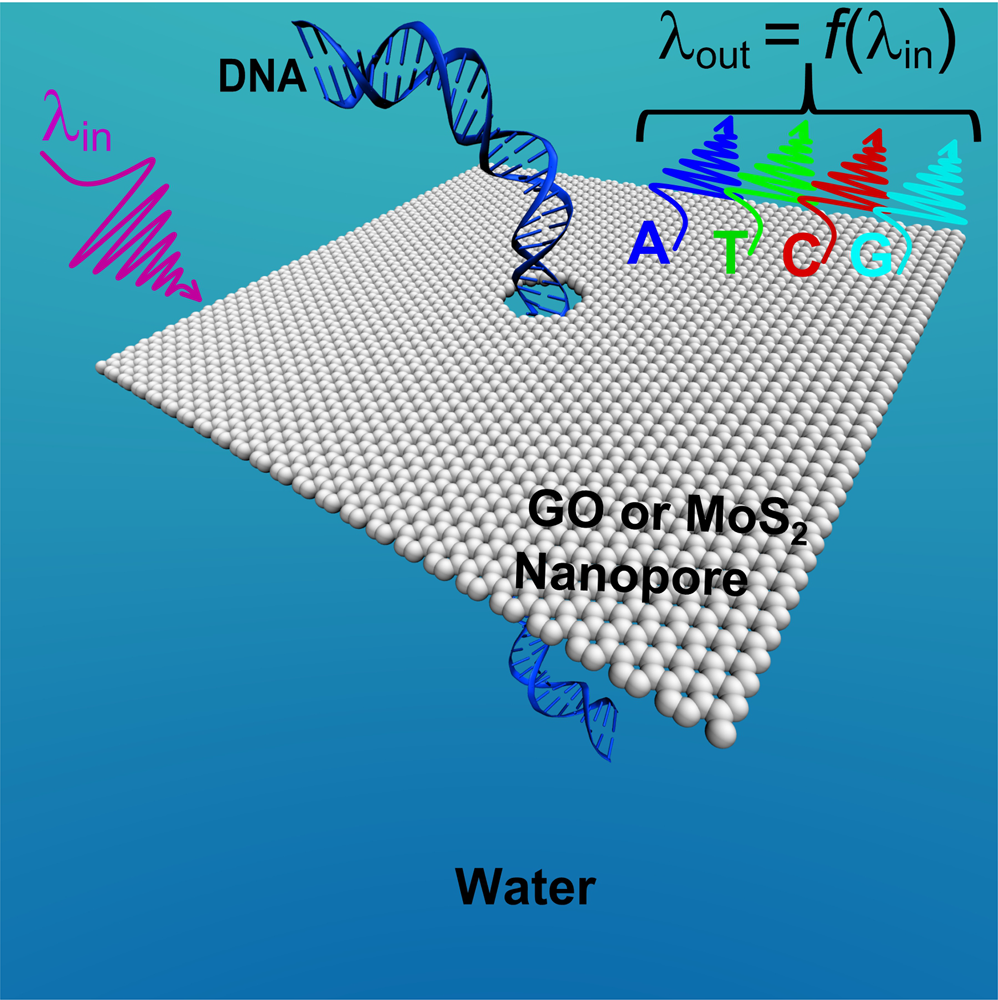 A potential sensing mechanism for DNA nucleobases by optical