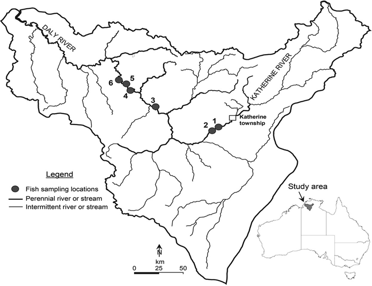 Dry season habitat use of fishes in an Australian tropical