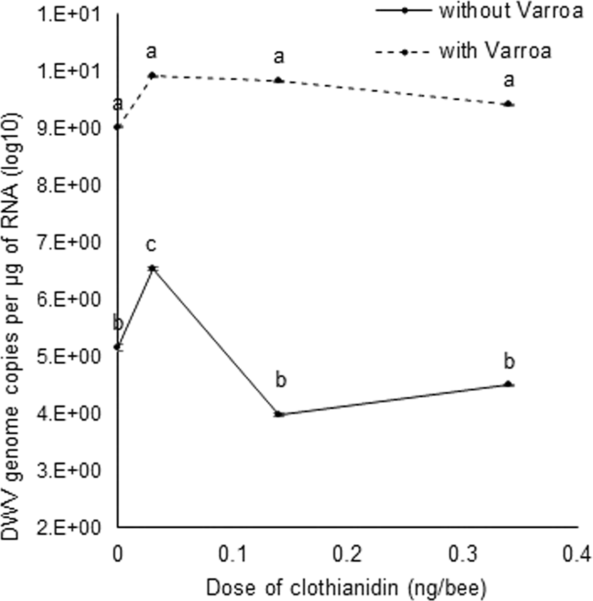 Effects of sublethal doses of clothianidin and/or V