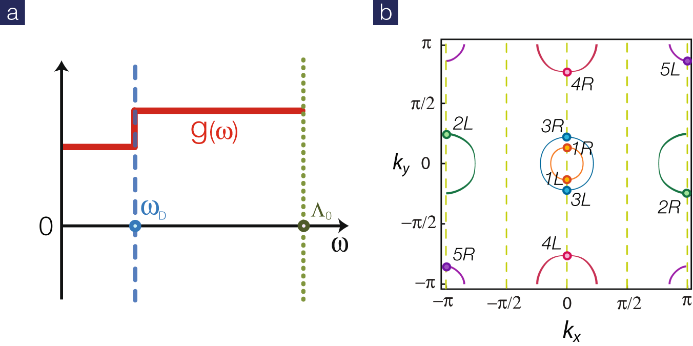 Anomalous isotope effect in iron-based superconductors
