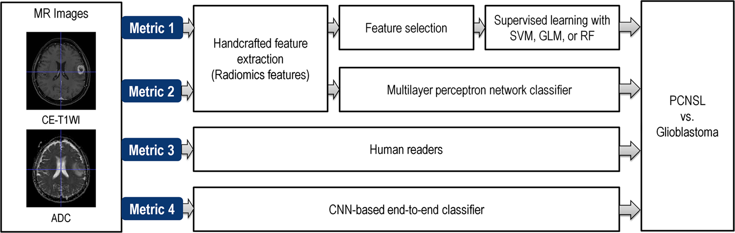 Radiomic features and multilayer perceptron network