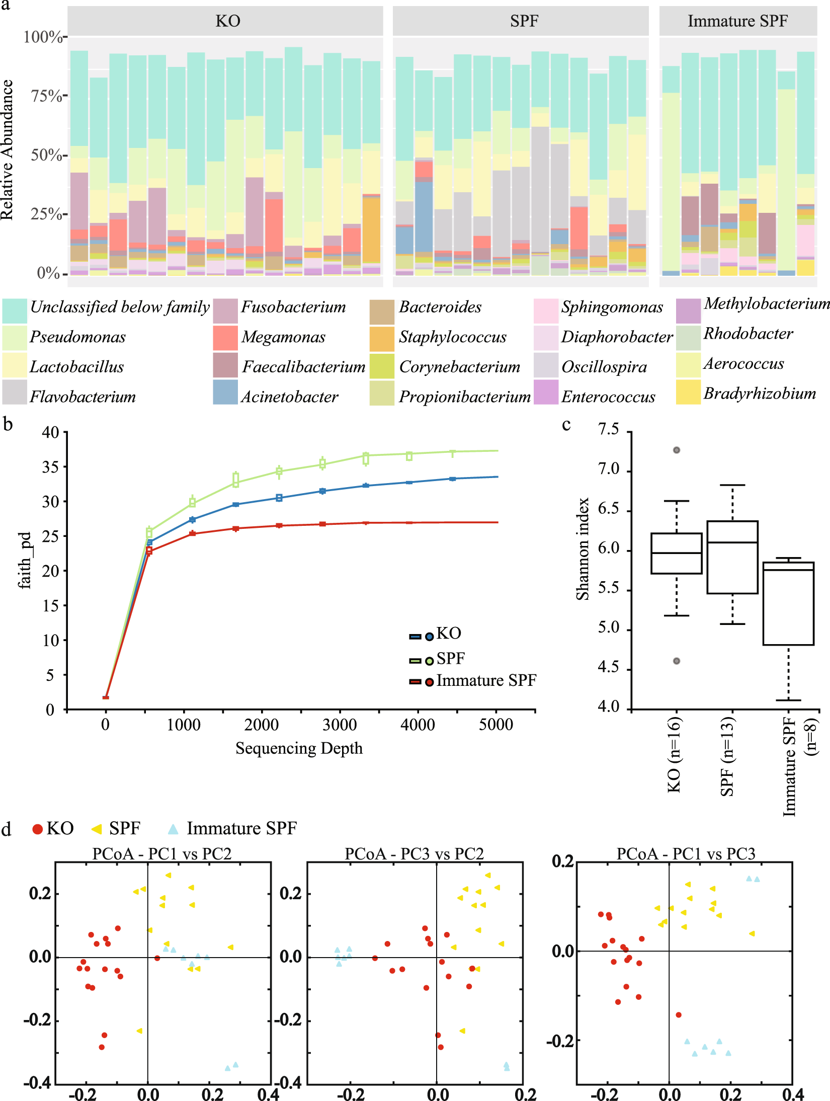 Characterization of microbial communities in the chicken