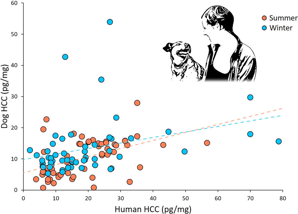 Long Term Stress Levels Are Synchronized In Dogs And Their