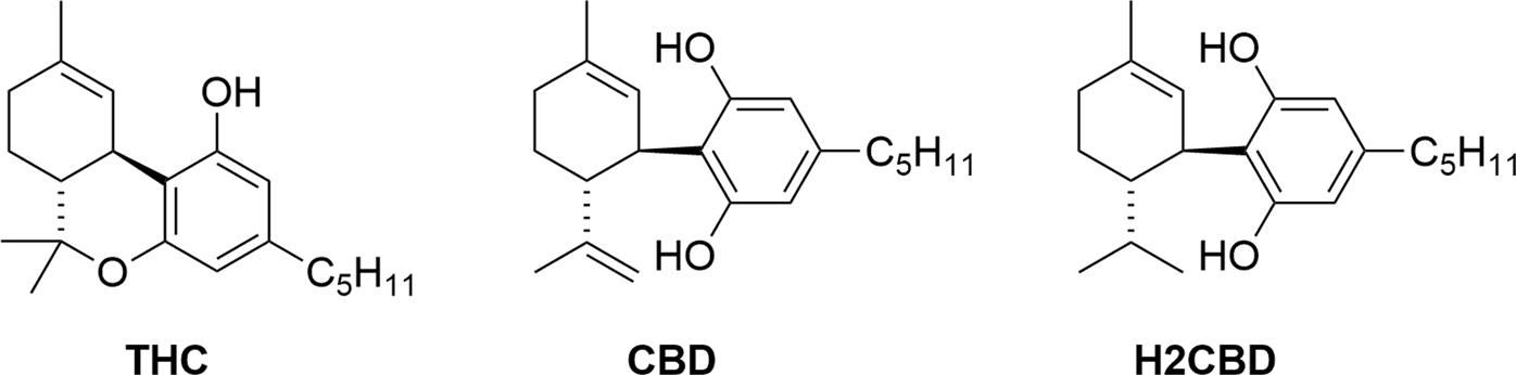 Risultati immagini per 8,9-Dihydrocannabidiol (H2CBD)