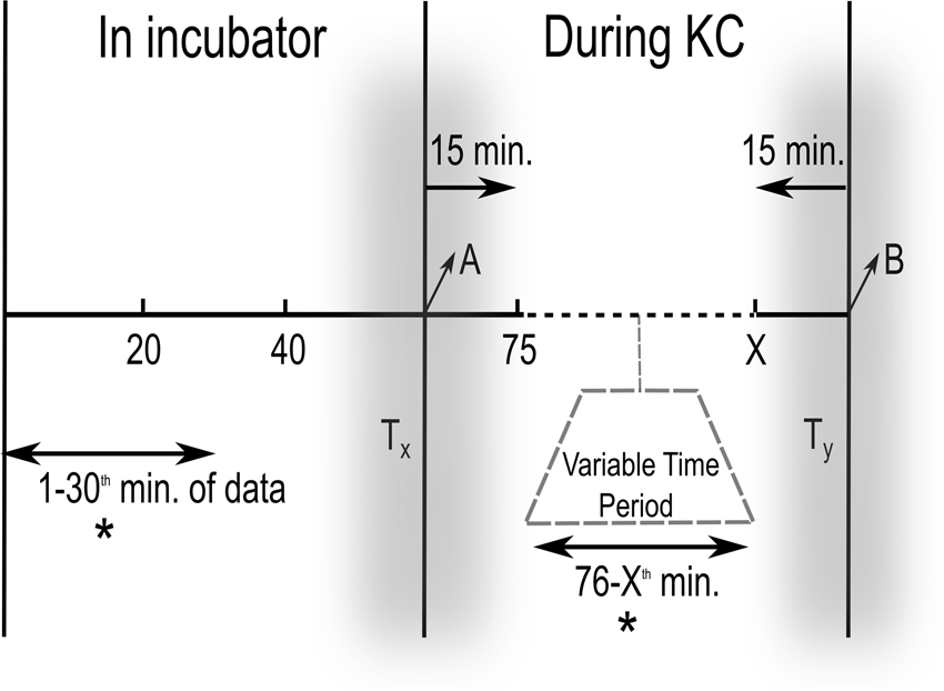 Statistical Modeling of Heart Rate Variability to Unravel the