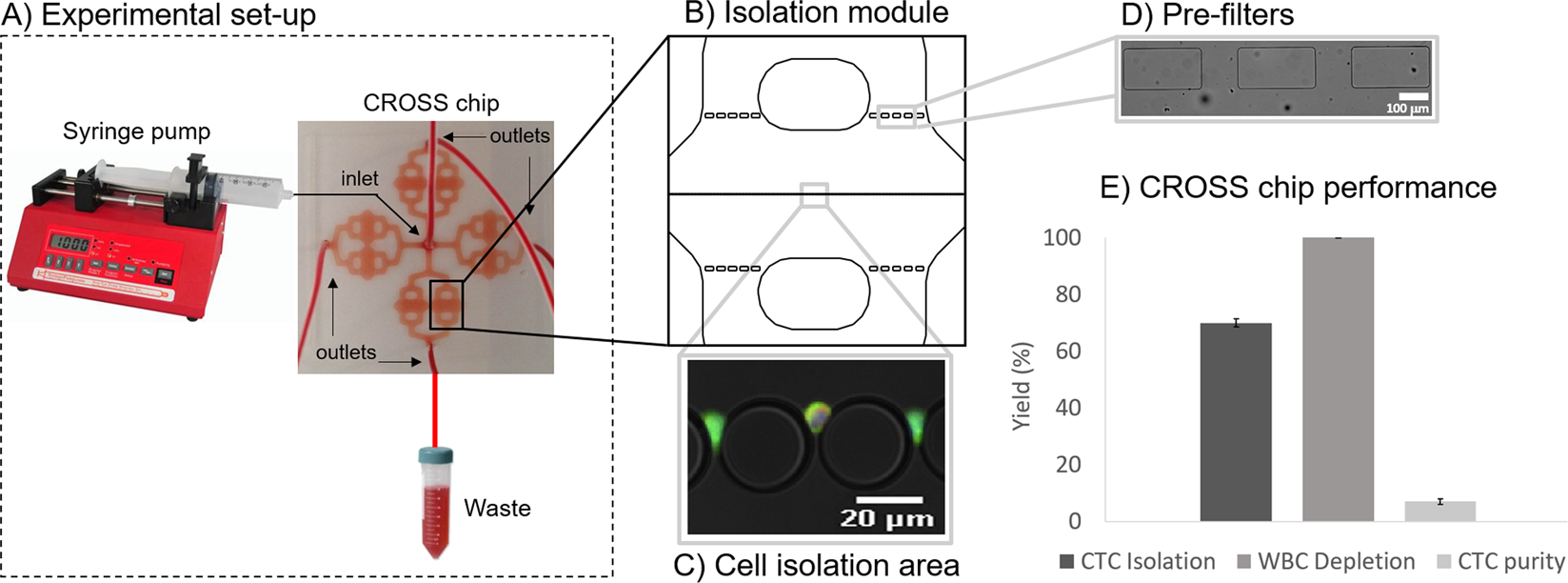 Fast and efficient microfluidic cell filter for isolation of