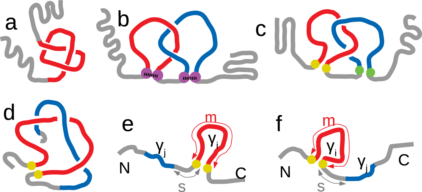 Sequence and structural patterns detected in entangled