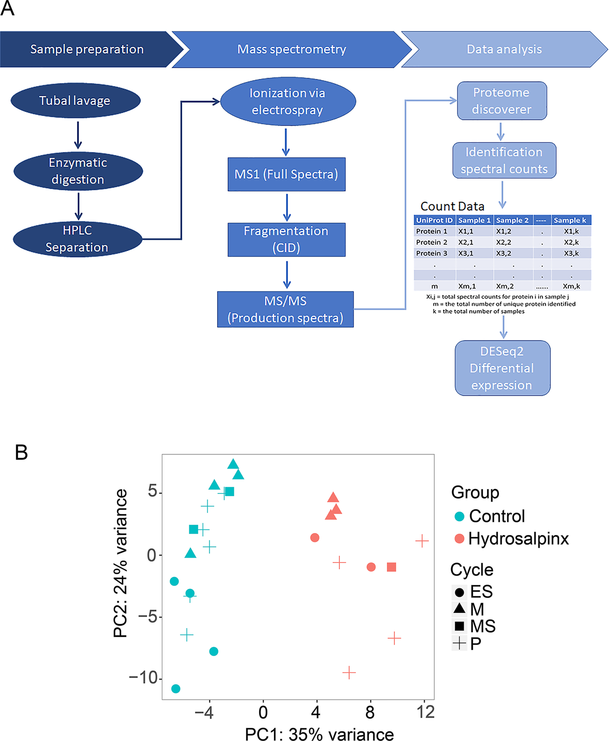 The human tubal lavage proteome reveals biological processes