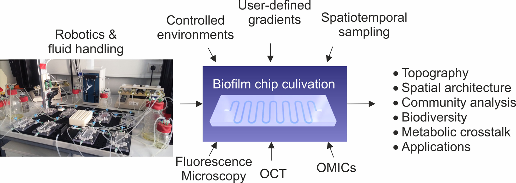 Machine-assisted cultivation and analysis of biofilms