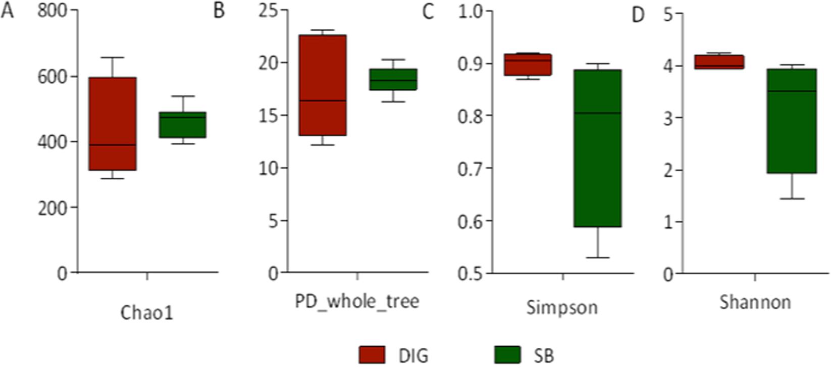 In-depth analysis of swim bladder-associated microbiota in