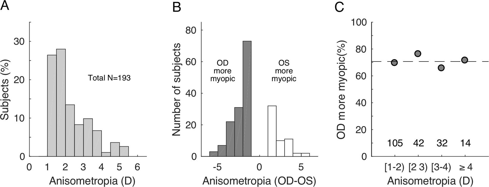 Elucidation of the more myopic eye in anisometropia: the interplay