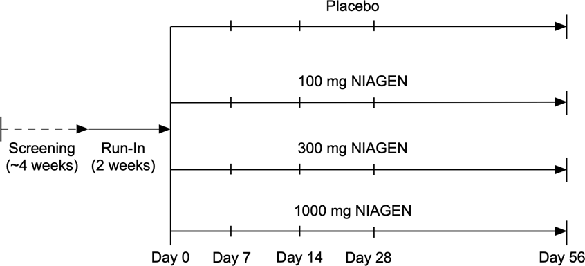 Safety and Metabolism of Long-term Administration of NIAGEN