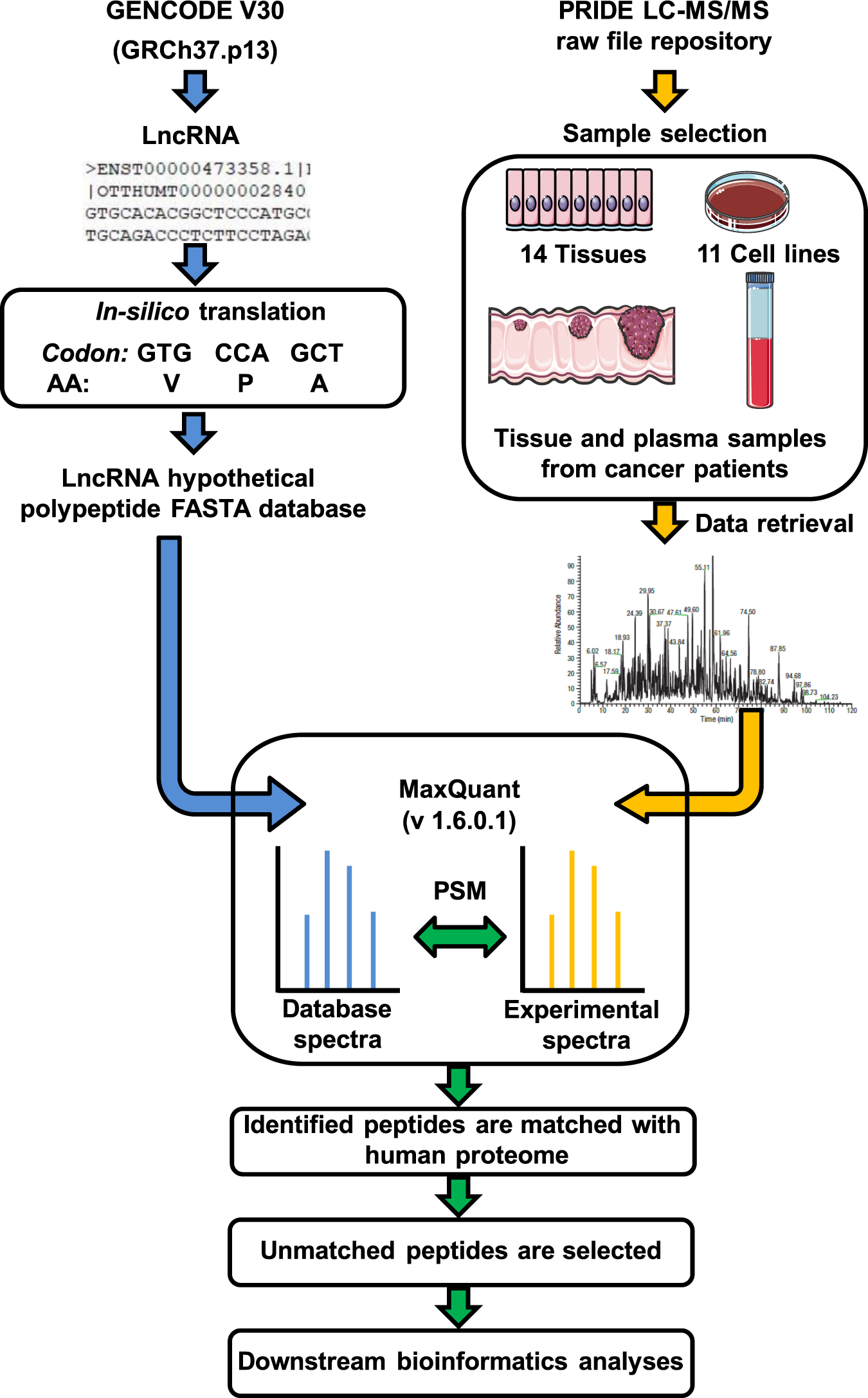 Harnessing the tissue and plasma lncRNA-peptidome to