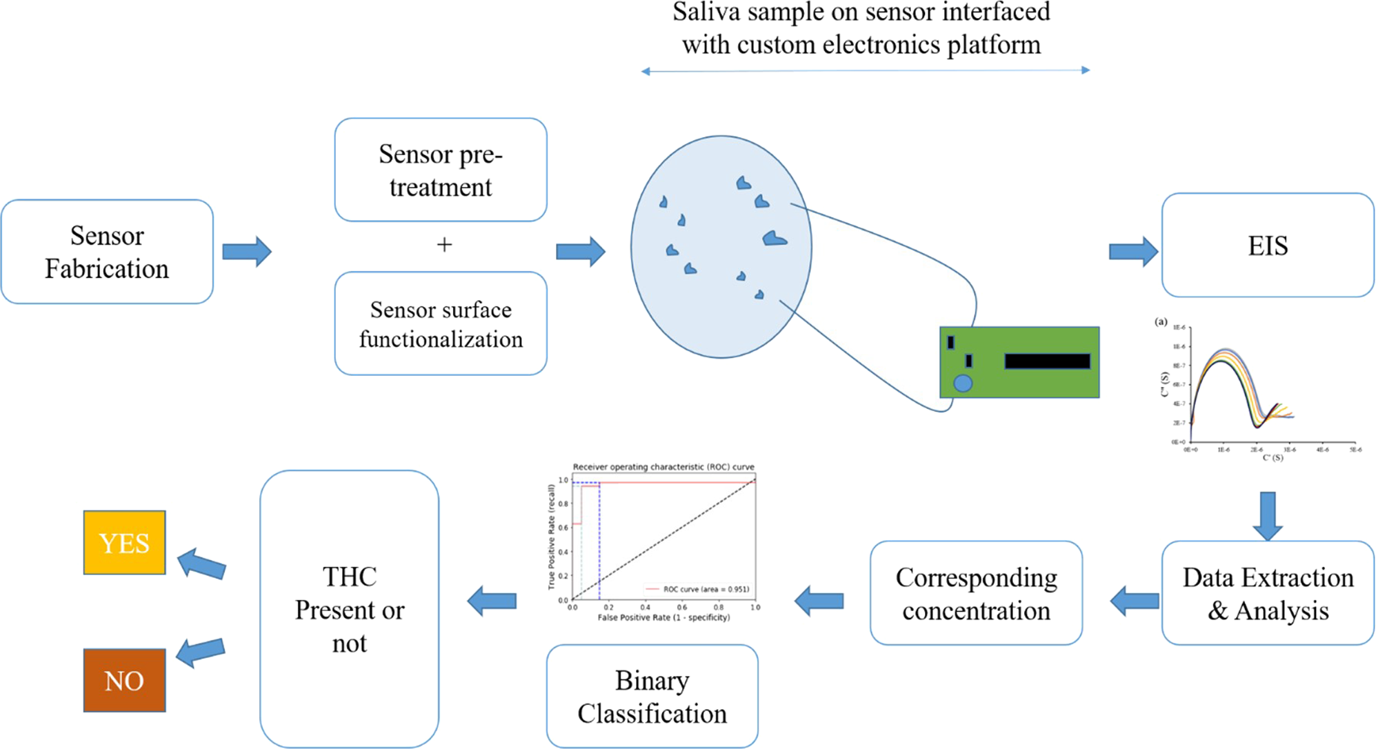 A Rapid Response Electrochemical Biosensor for Detecting Thc