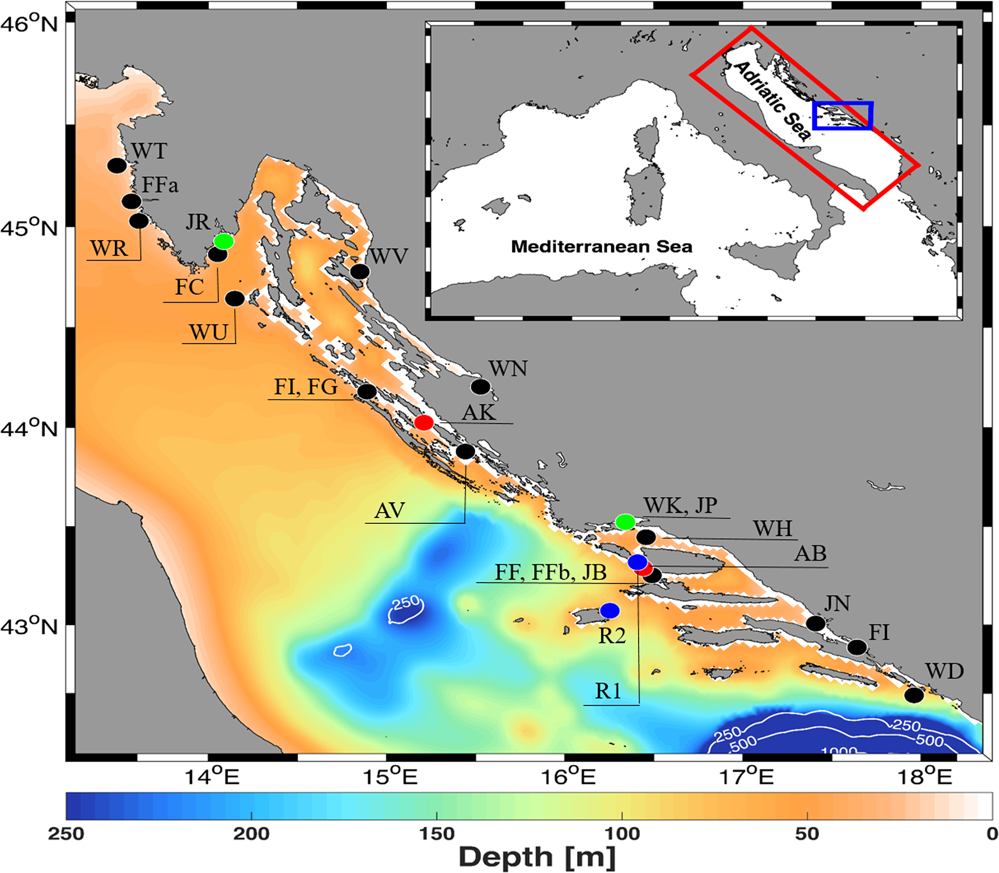 Spatial connectivity pattern of expanding gilthead seabream ...