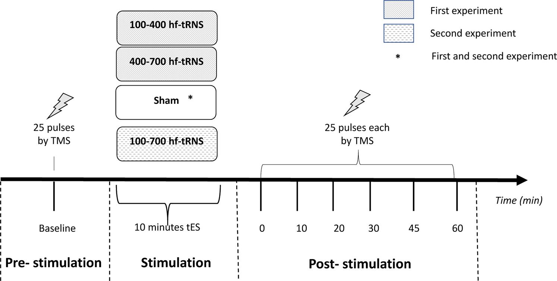 wiring diagram for signal stat 700 transcranial random noise stimulation  trns  a wide range of  transcranial random noise stimulation