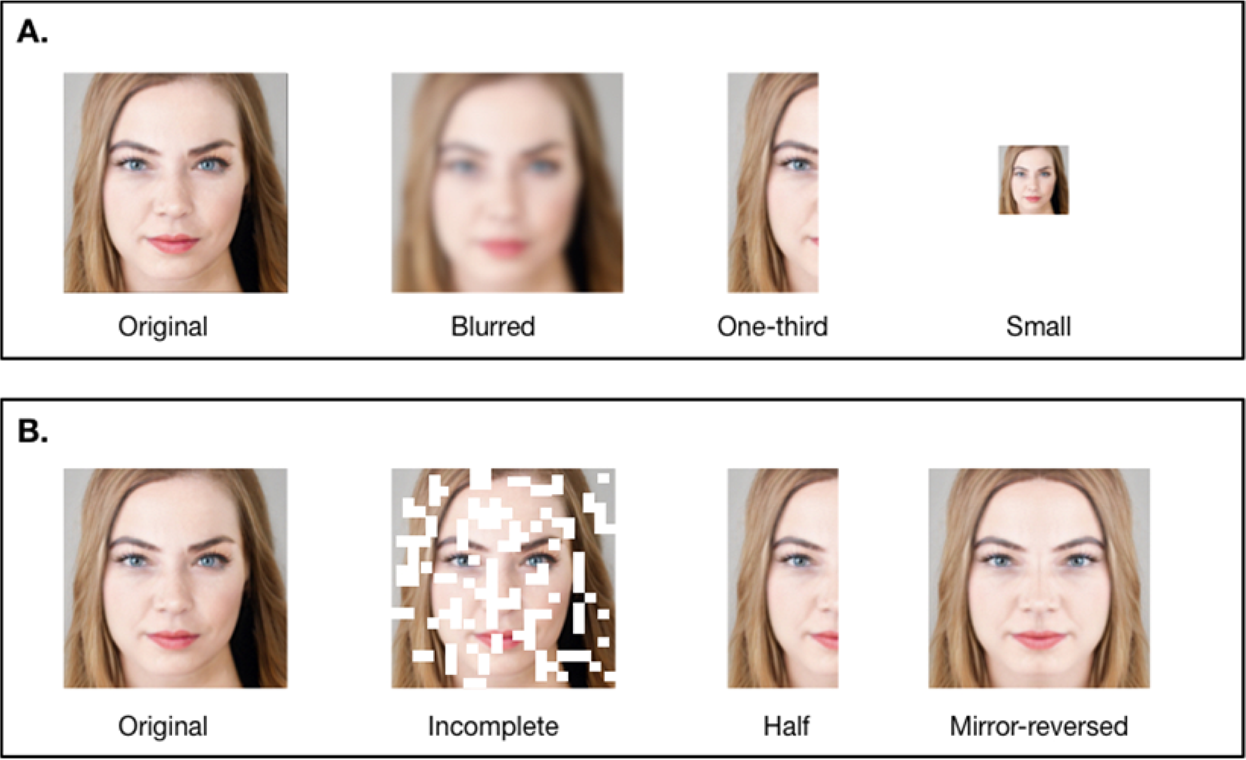 Test attractiveness scale Attractive Scale