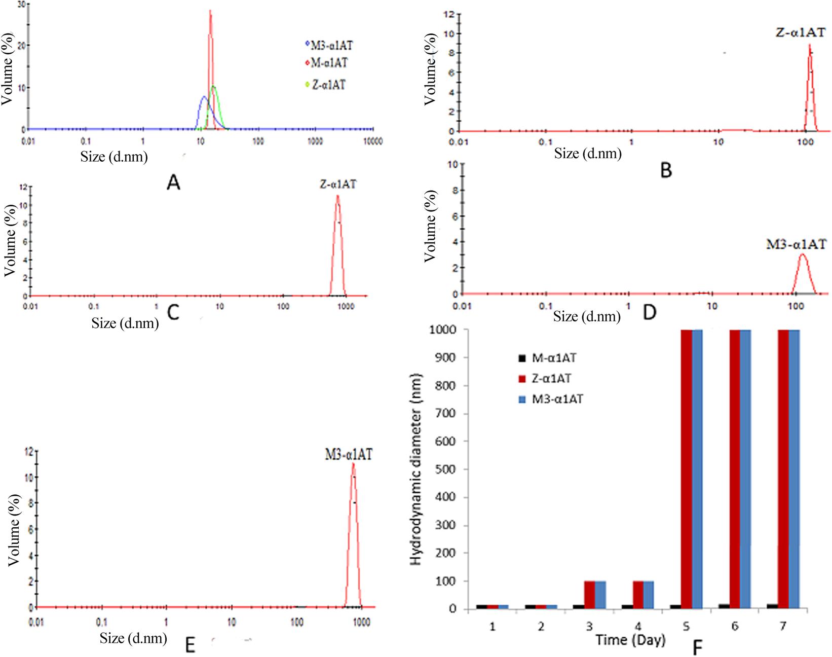 Aggregation Of M3 E376d Variant Of Alpha1 Antitrypsin