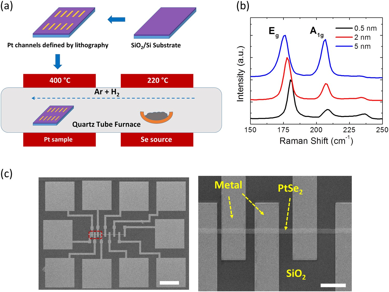 Electrical Devices From Top Down Structured Platinum Diselenide Mos Transistors 8211 Operation Films Npj 2d Materials And Applications