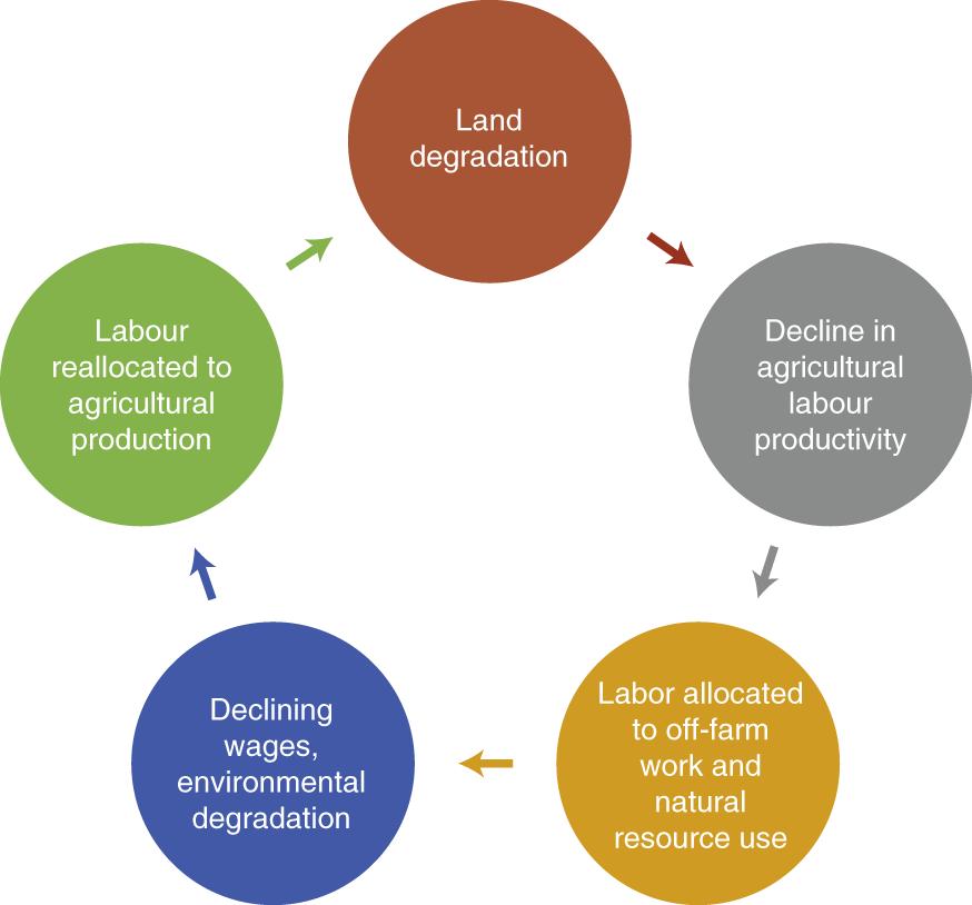 Land degradation and poverty | Nature Sustainability