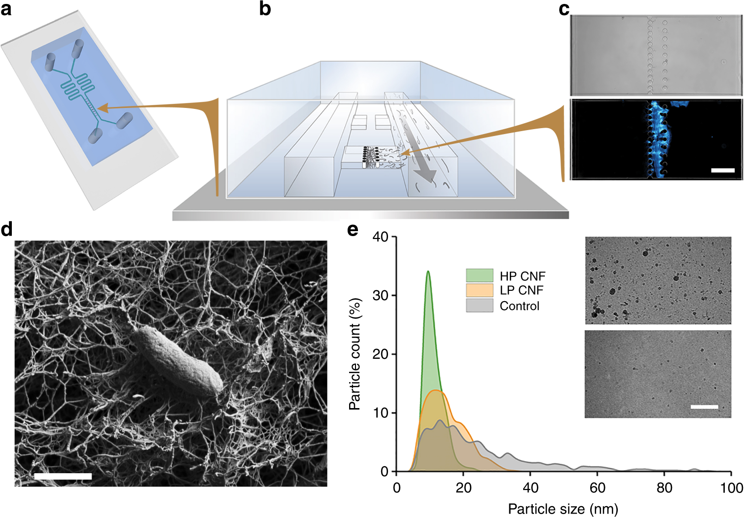 Controlled Communication Between Physically Separated Bacterial Block Diagram Composition Of The Full Adder B Top Level Populations In A Microfluidic Device Communications Biology