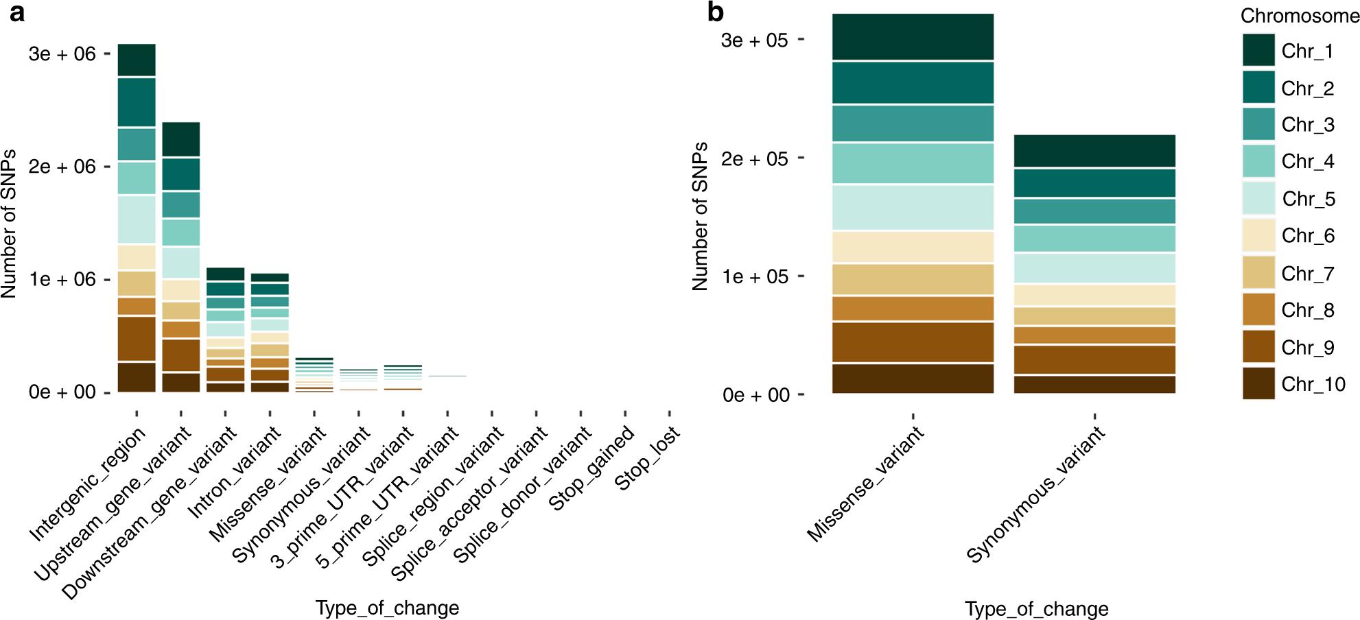 8e2e70509c30 Population genomic analyses of the chocolate tree