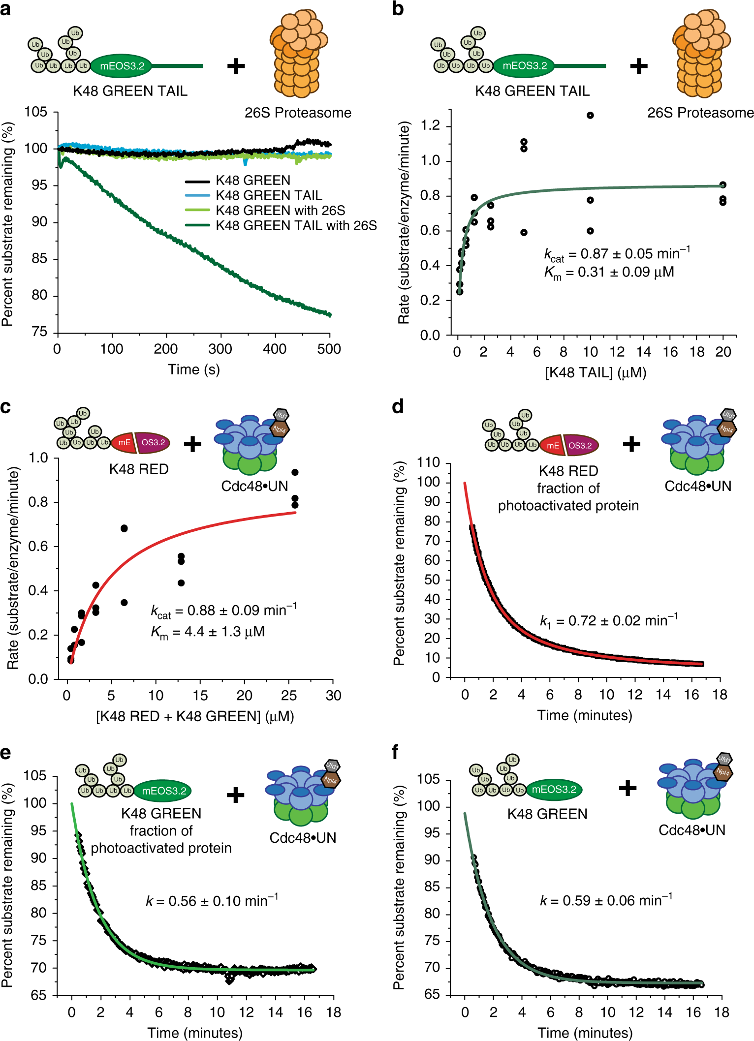 The Cdc48 unfoldase prepares well-folded protein substrates