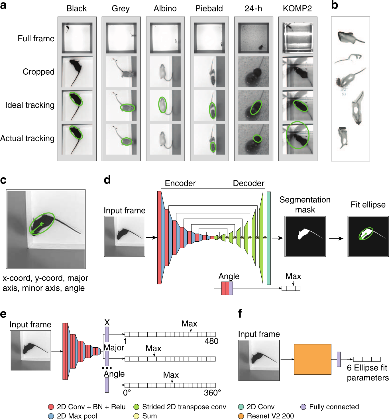 Robust mouse tracking in complex environments using neural