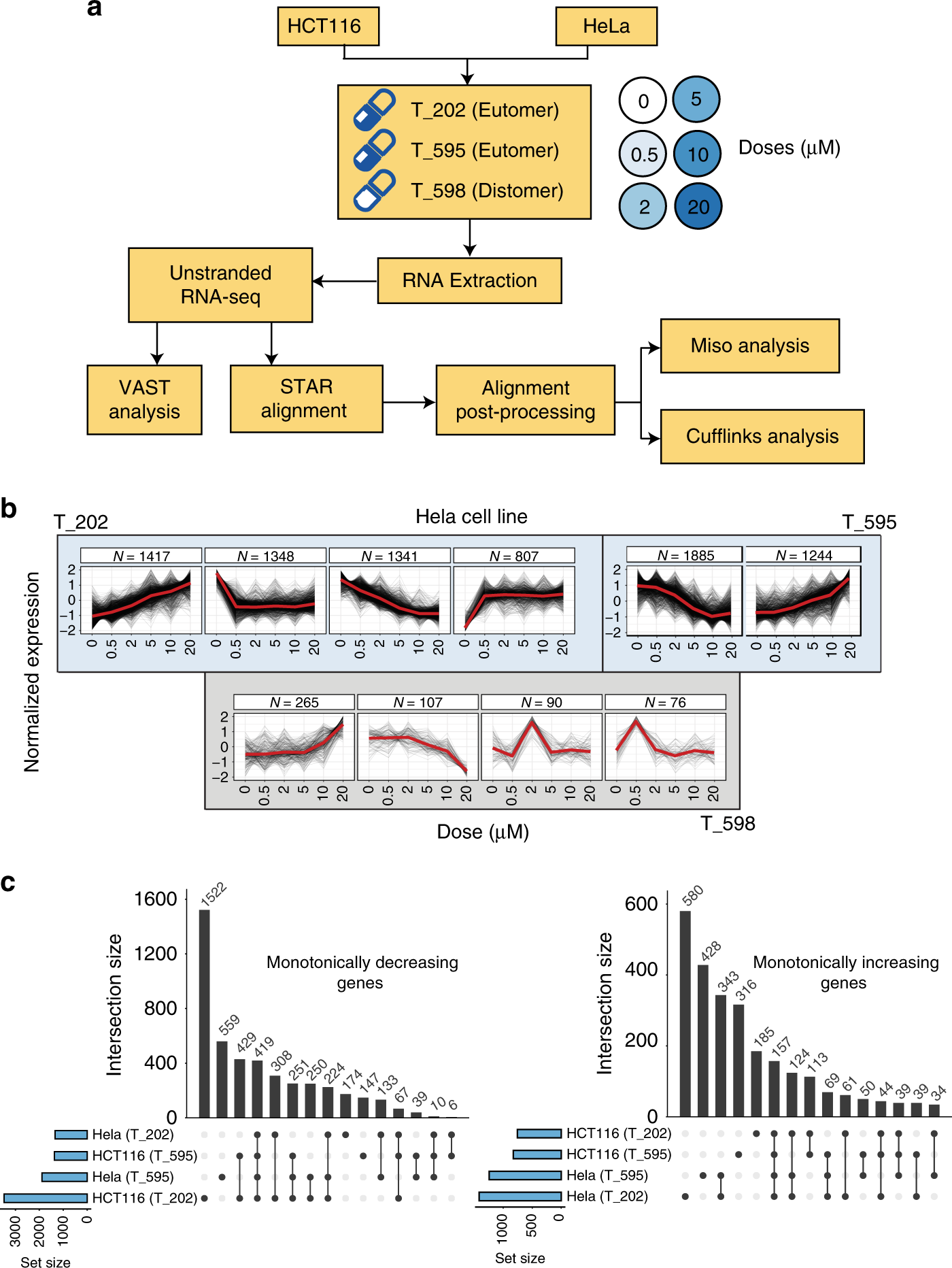 Pharmacological systems analysis defines EIF4A3 functions in