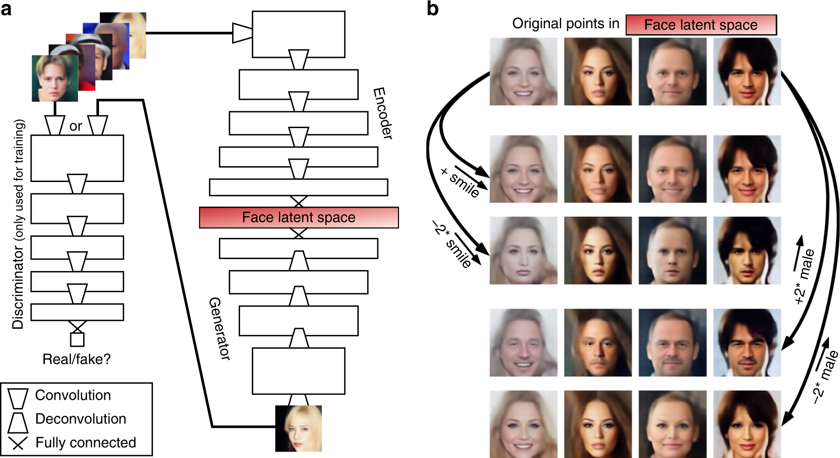 Reconstructing faces from fMRI patterns using deep