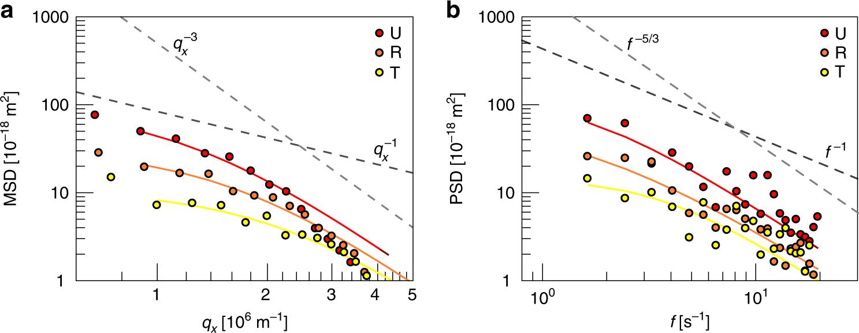 Hemoglobin S and C affect biomechanical membrane properties