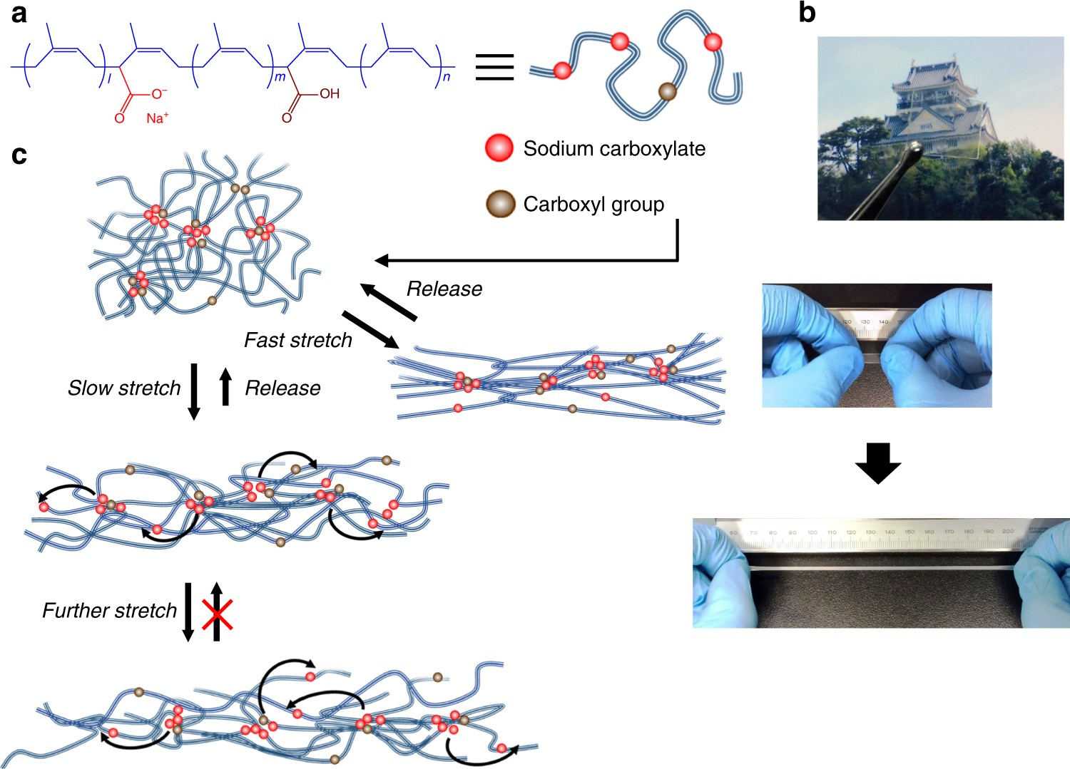 Dynamic ionic crosslinks enable high strength and