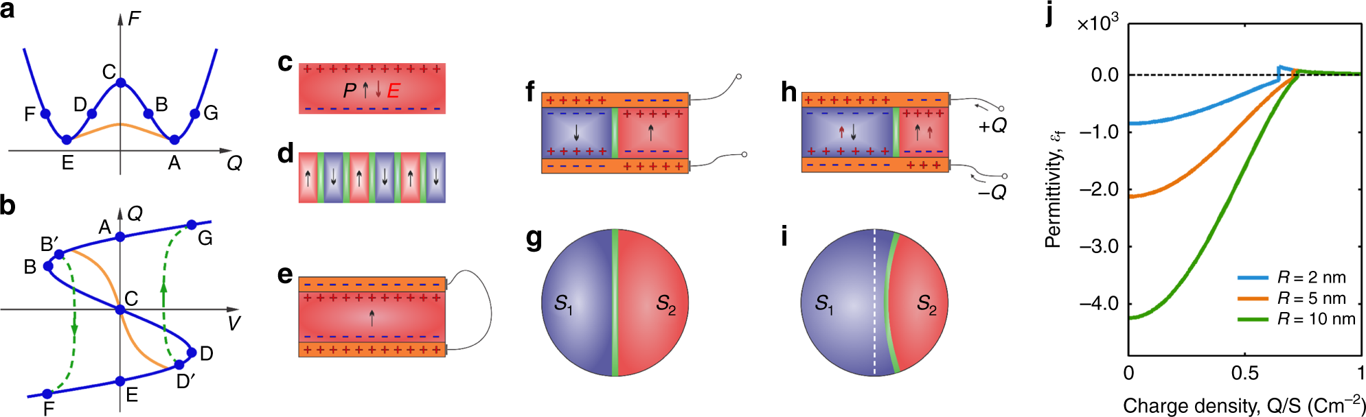 Harnessing ferroelectric domains for negative capacitance