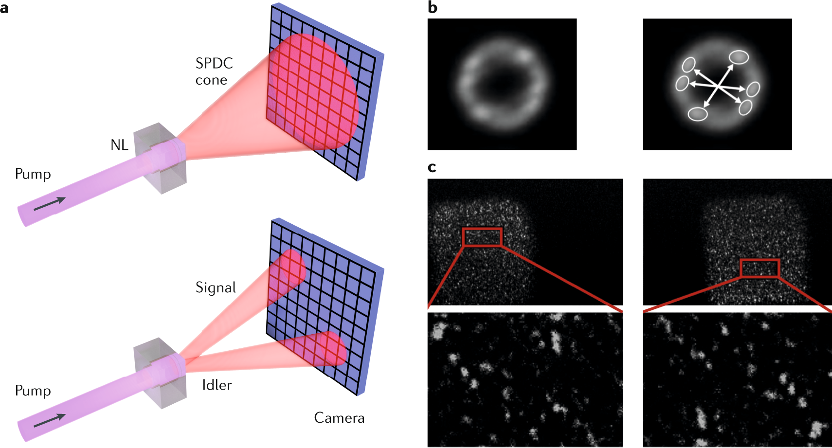Imaging with quantum states of light | Nature Reviews Physics