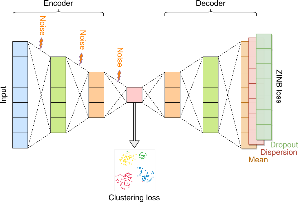 Clustering single-cell RNA-seq data with a model-based deep