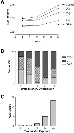 Identification of radiation-specific responses from gene