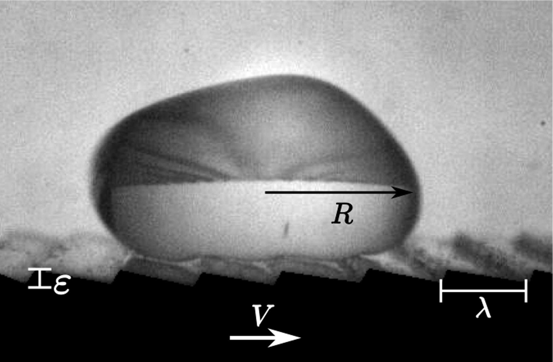 Propulsion on a superhydrophobic ratchet   Scientific Reports