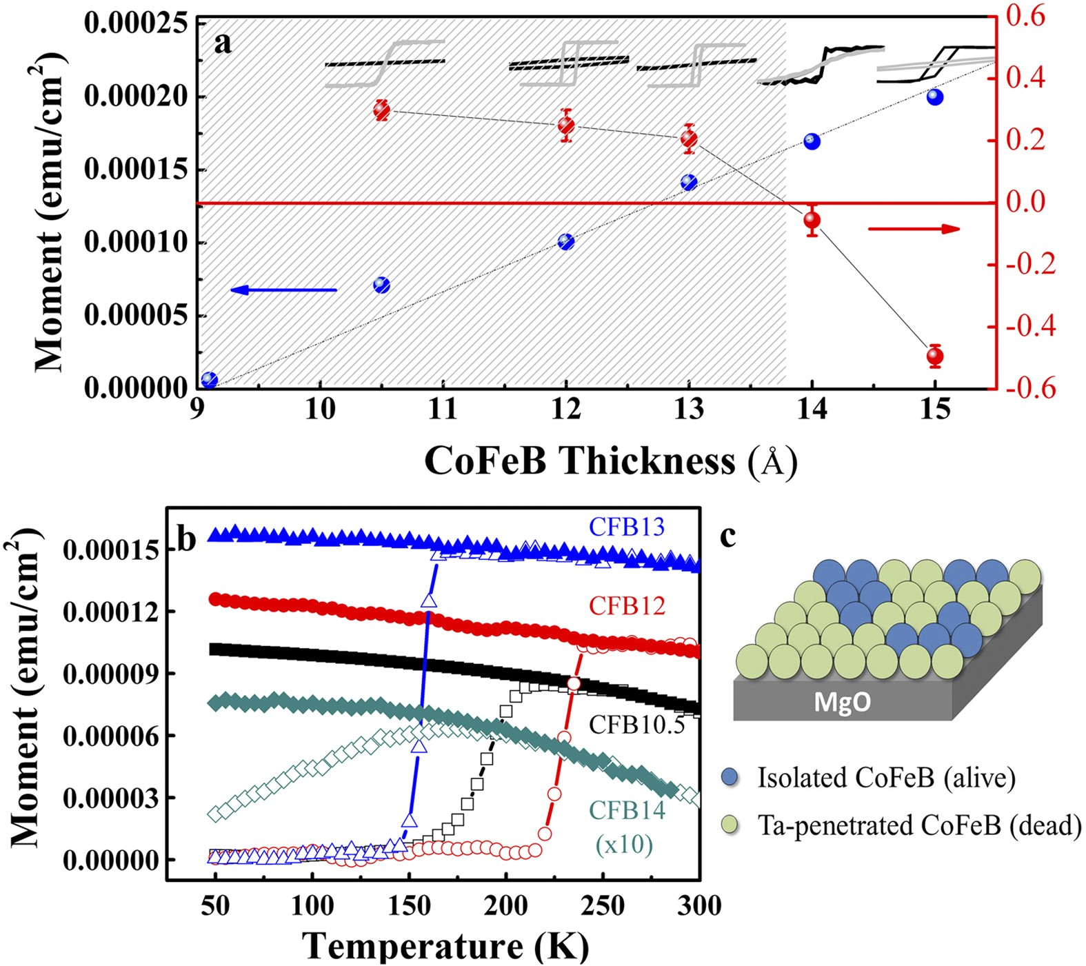 Competing Anisotropy-Tunneling Correlation of the CoFeB/MgO ... on