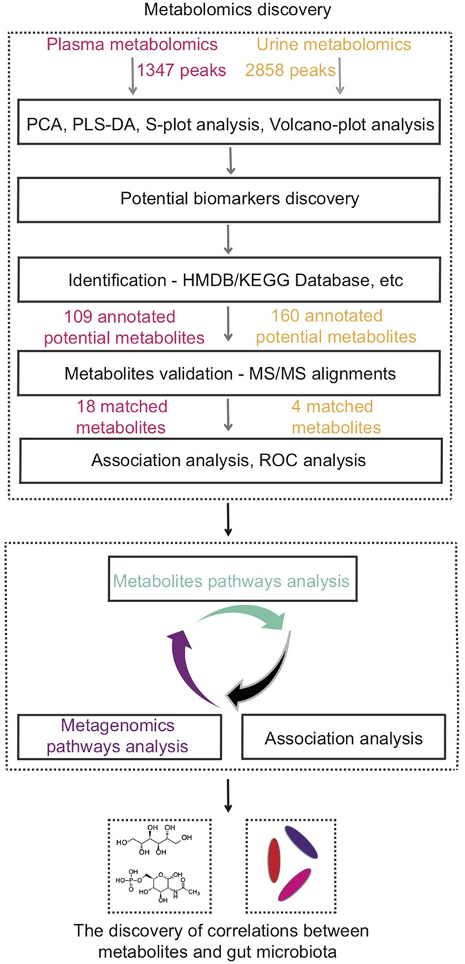 Integrated Metabolomics And Metagenomics Analysis Of Plasma