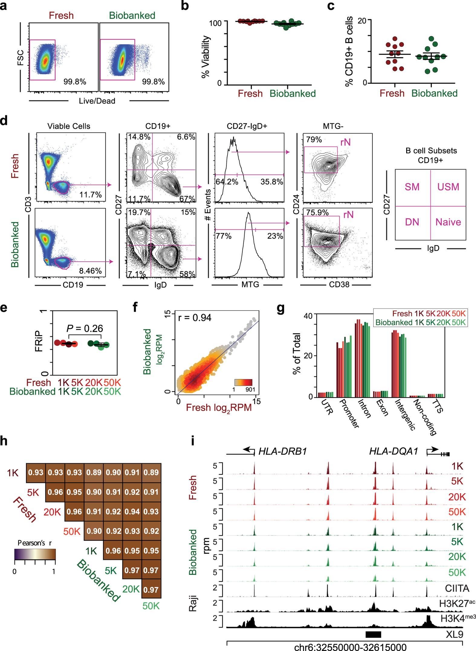ATAC Seq On Biobanked Specimens Defines A Unique Chromatin