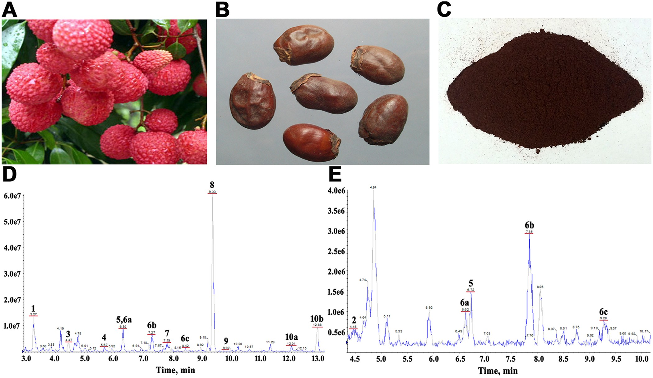 Litchi Seed Extracts Diminish Prostate Cancer Progression Via