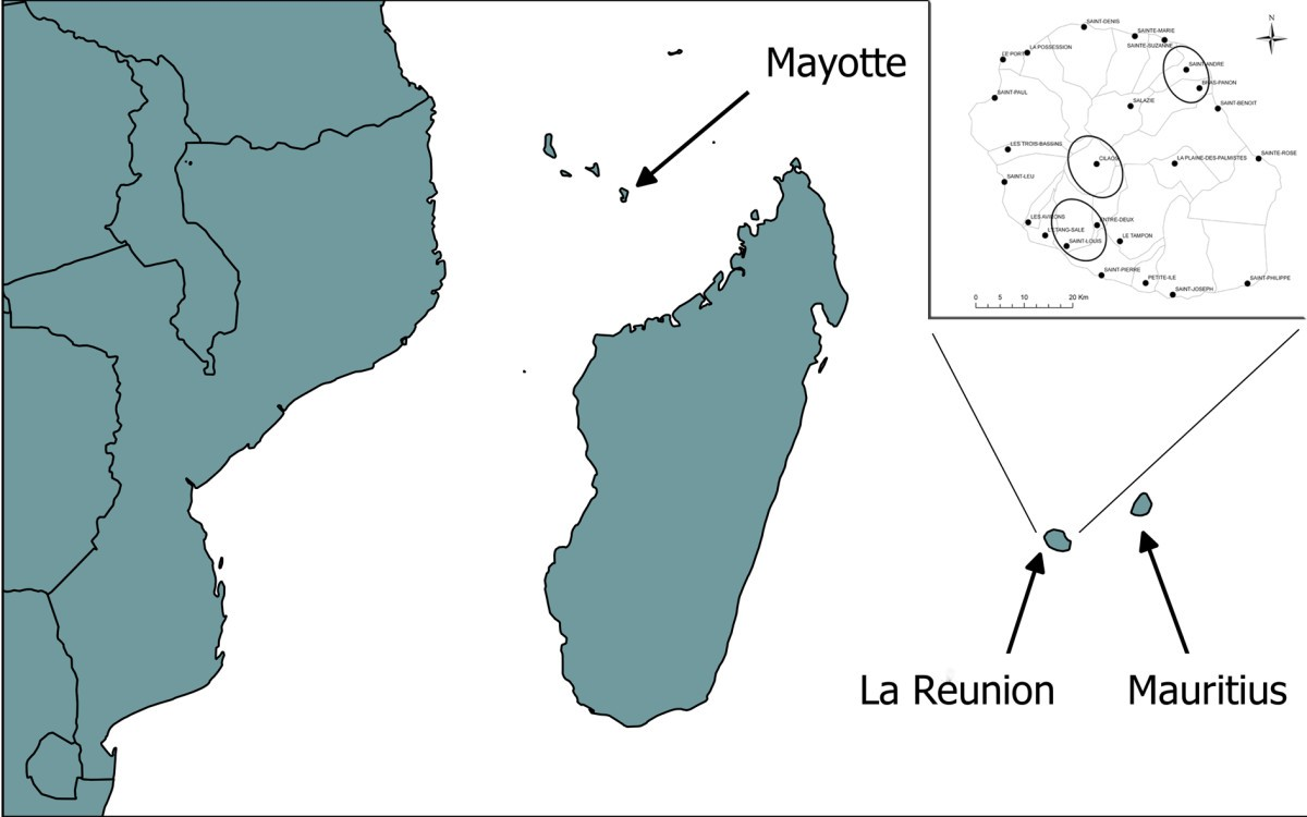 Chikungunya antibodies detected in non-human primates and rats in ...
