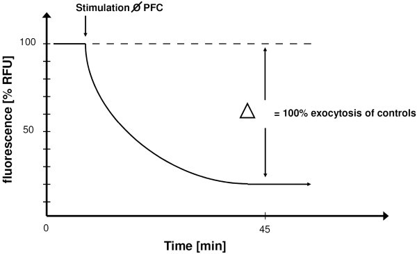 Effects Of Perfluorocarbons On Surfactant Exocytosis And Membrane