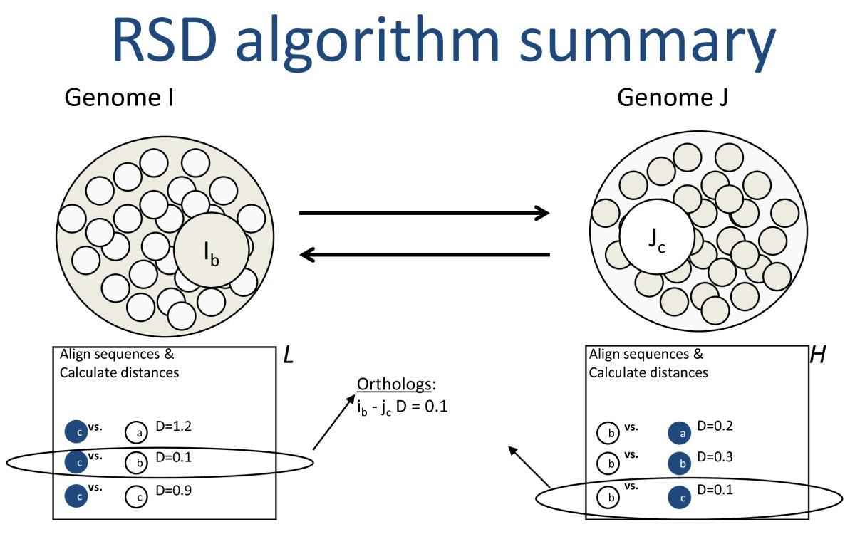 Cloud computing for comparative genomics | BMC Bioinformatics | Full