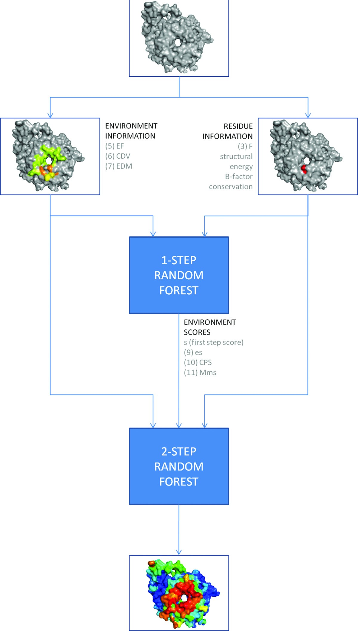 Improving The Prediction Of Protein Binding Sites By Combining Voronoi Diagram Generator Figure 1