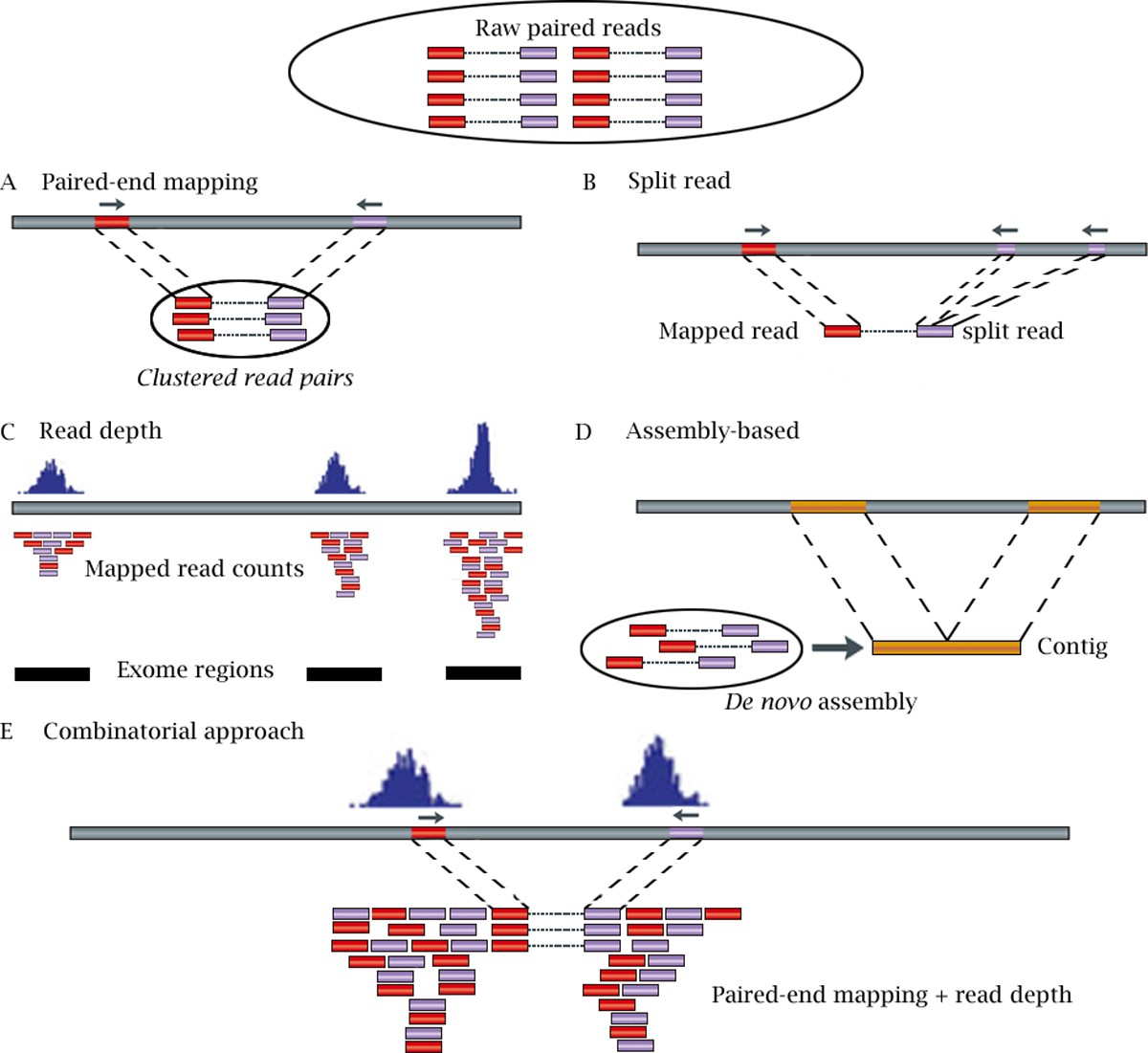 Computational Tools For Copy Number Variation Cnv Detection Using Simple Circuit Diagram Detecting Loss Of 4 20 Ma Signal Figure 1