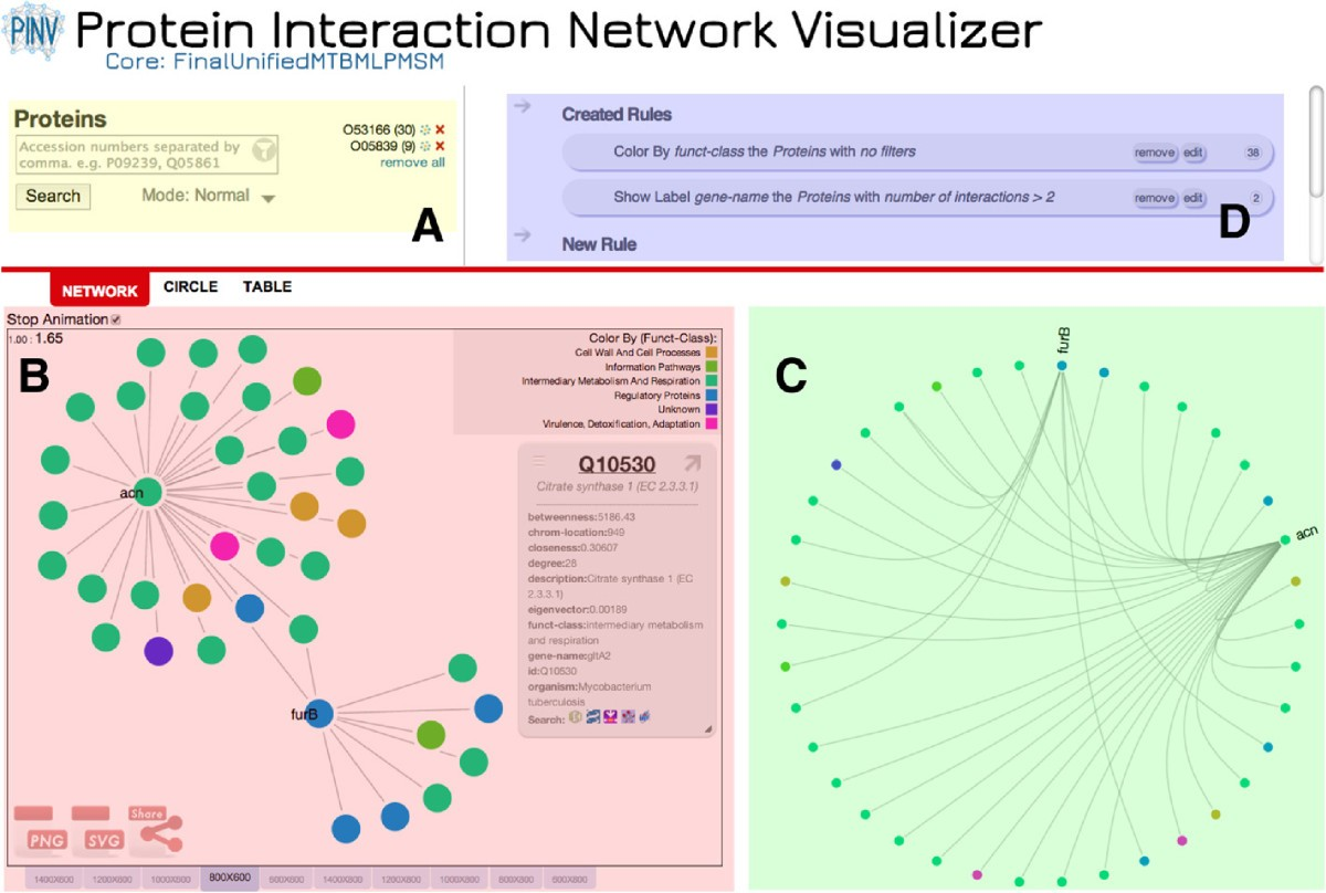 A web-based protein interaction network visualizer | BMC ...